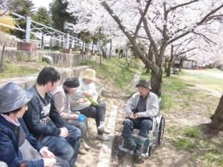 桜の下でベンチに腰かけてなごむ